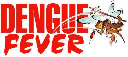 Dengue fever singapore